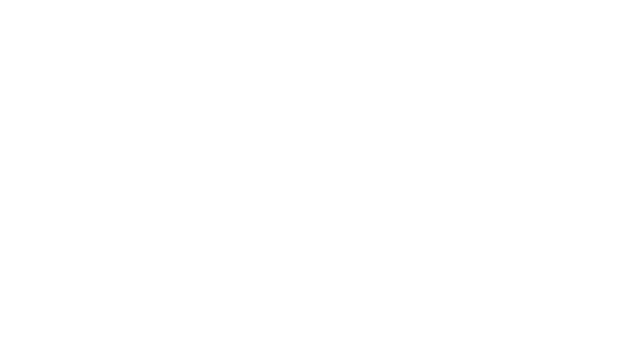Hamzawy-Group